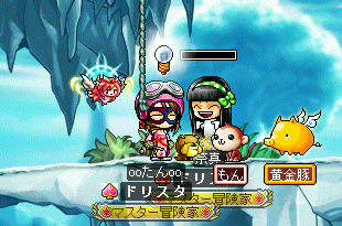 MapleStory 2009-11-29 13-07-52-18.png