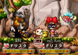 MapleStory 2009-12-11 23-16-22-12.png