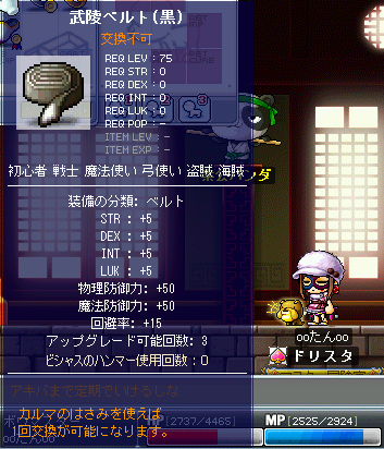 MapleStory 2010-01-09 23-36-47-85.png