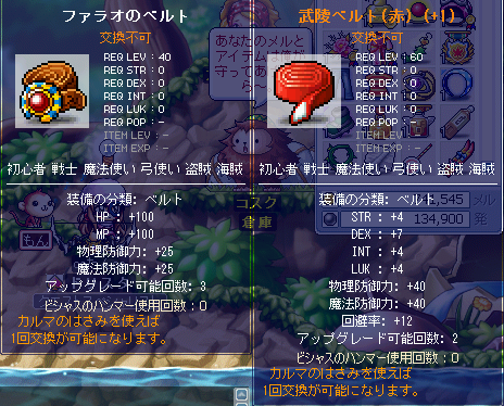 MapleStory 2010-02-07 02-15-13-51.png